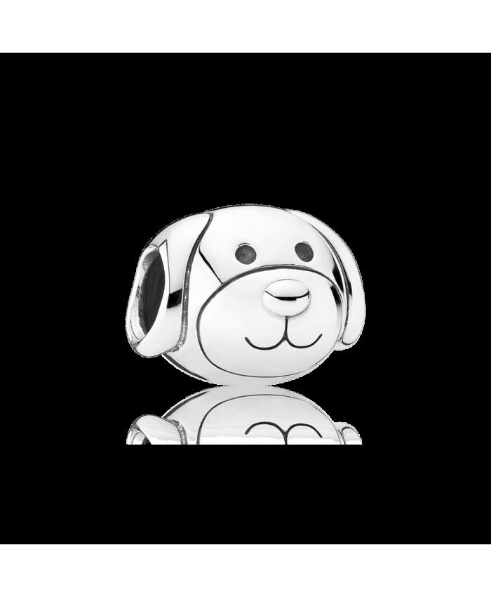 Pandora Devoted Dog